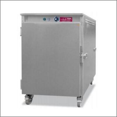 Étuve ventilée 10 grilles 20 bacs GN1